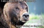 PETA and the bear..jpg