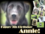 Annie's 9th Birthday.jpg